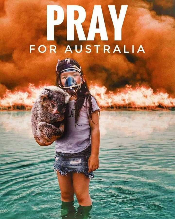 Pin by Michelle Stubbs on World Peace and Prayers in 2020