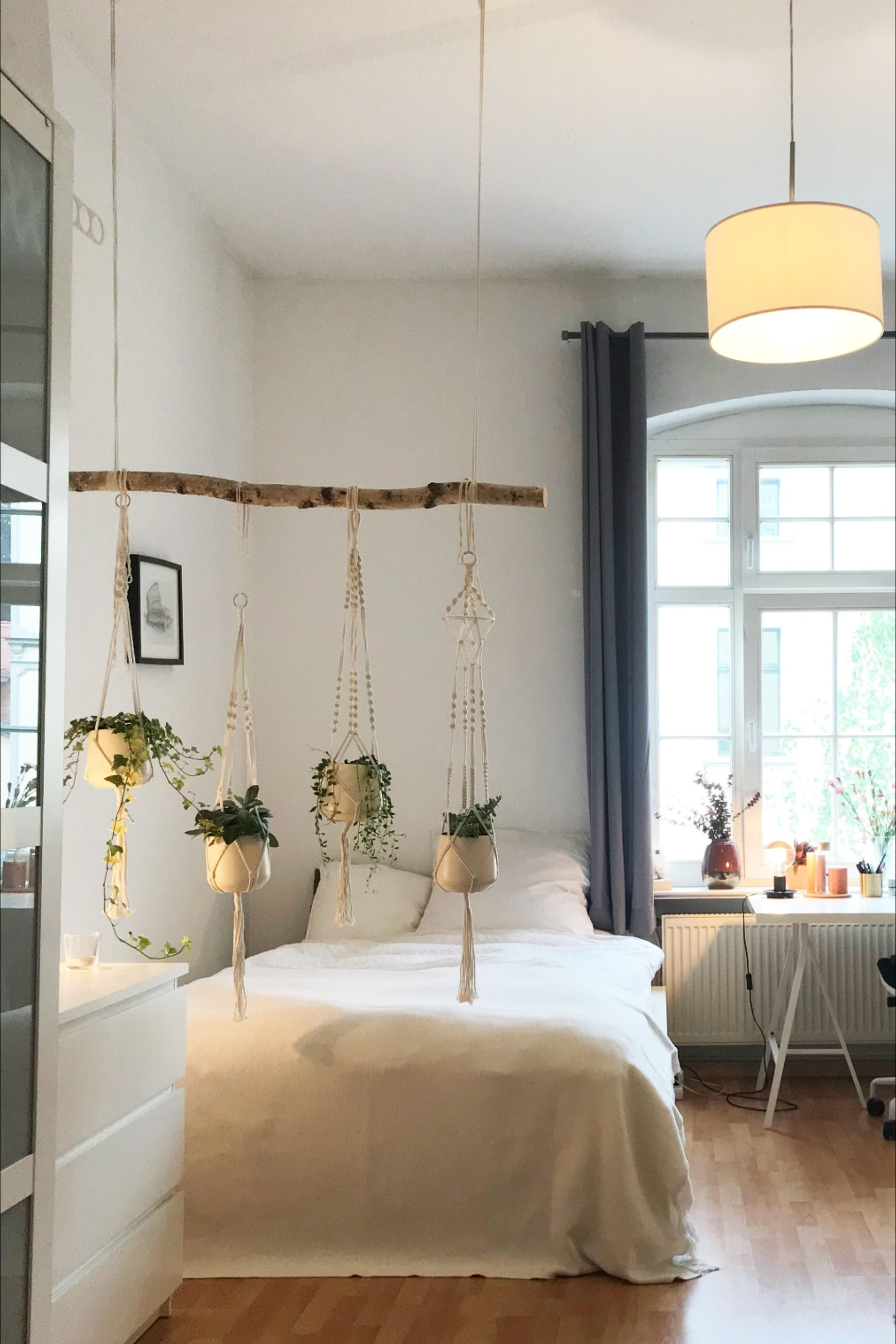Wg Zimmer Mit Pflanzendekoration In 2020 Wg Zimmer Wohnen Wohnung