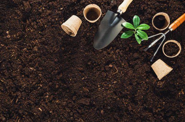 gardening tools on garden soil texture background top view - Garden Soil