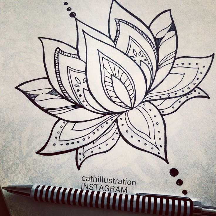 Image result for simple lotus drawing (With images