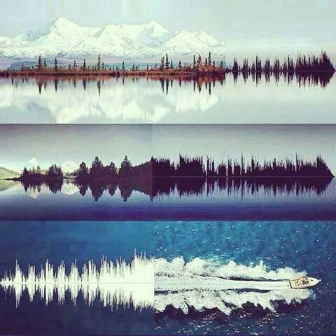Waveforms and nature