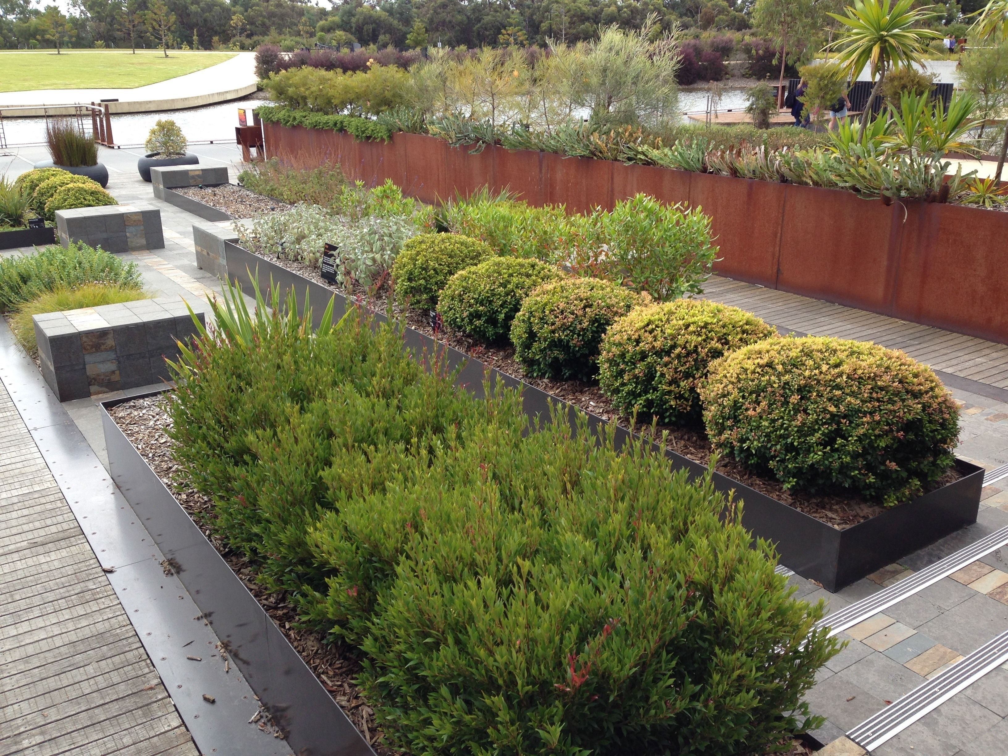 A Simple Guide To Landscaping Ideas Australian Native ...