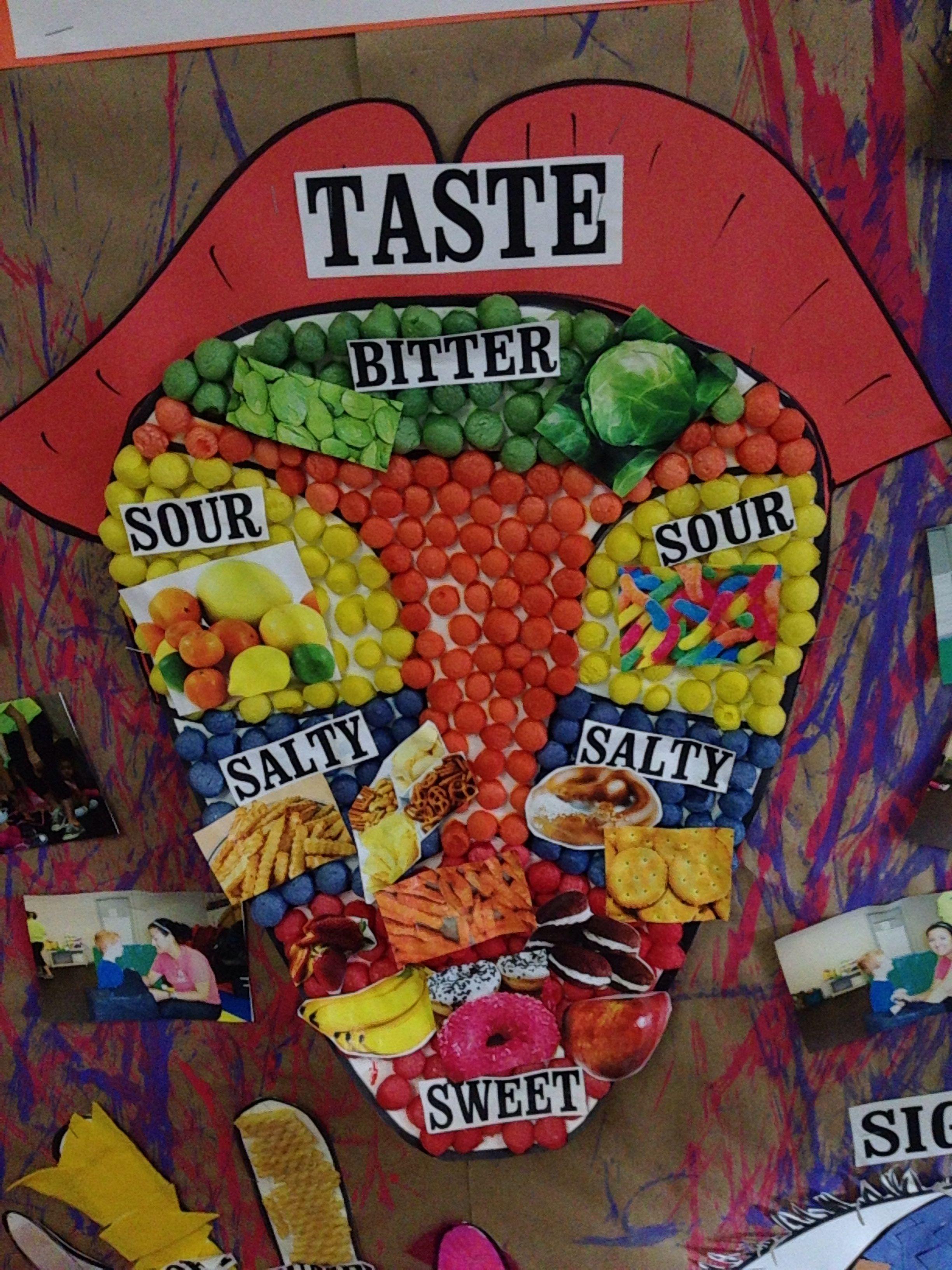 Five Senses Board Taste