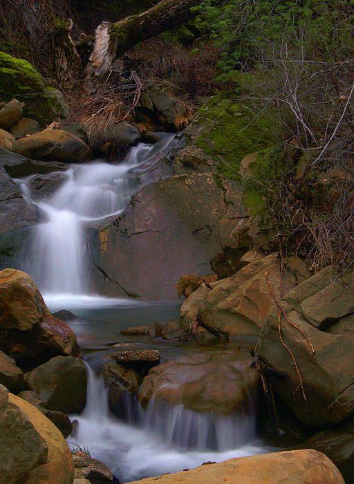 Title:  Mix Canyon Creek  Artist:  Bill Gallagher  Medium:  Photograph - Photograph