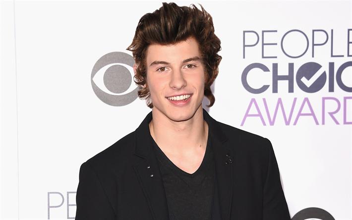 Lataa kuva Shawn Mendes, hymy, kaverit, julkkis, kanadalainen laulaja