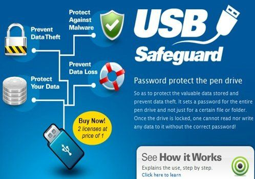 Image result for USB Safeguard