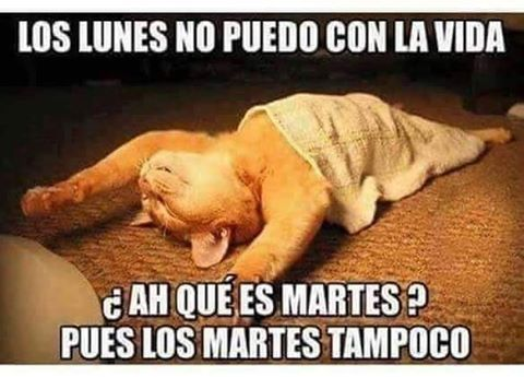 Sleep Over At Someone Else S House When You Have A Perfectly Good Bed At Home Mexican Funny Memes Mexican Jokes Really Funny Memes