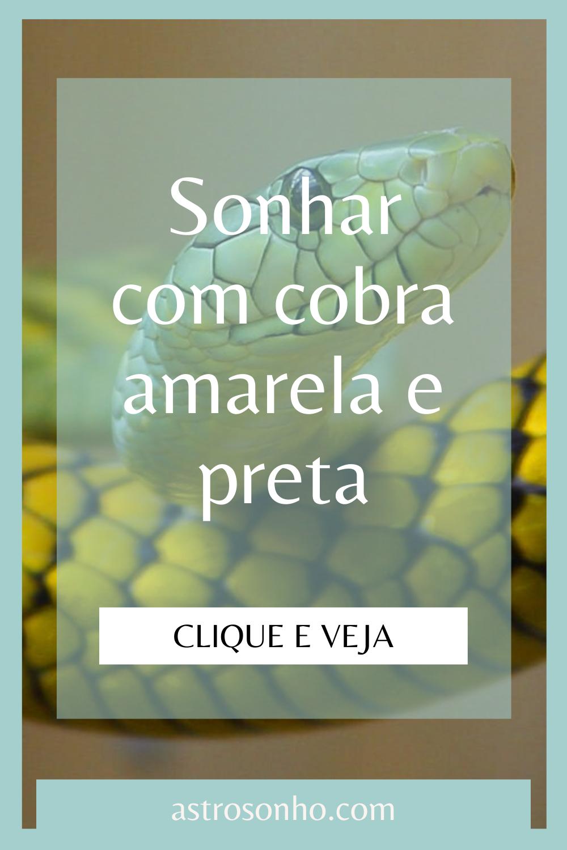 Sonhar Com Cobra Amarela E Preta Em 2020 Significado Dos Sonhos