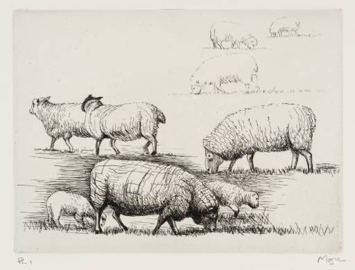 Henry Moore from The Sheep Sketchbook 1926