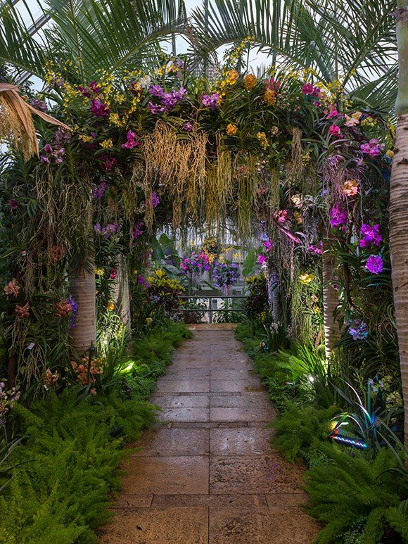 The Orchid Show Displays In The Tropical Greenhouse 400 x 300