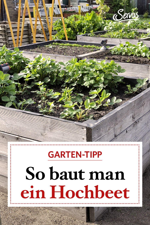 Pin Auf Gartenarbeiten