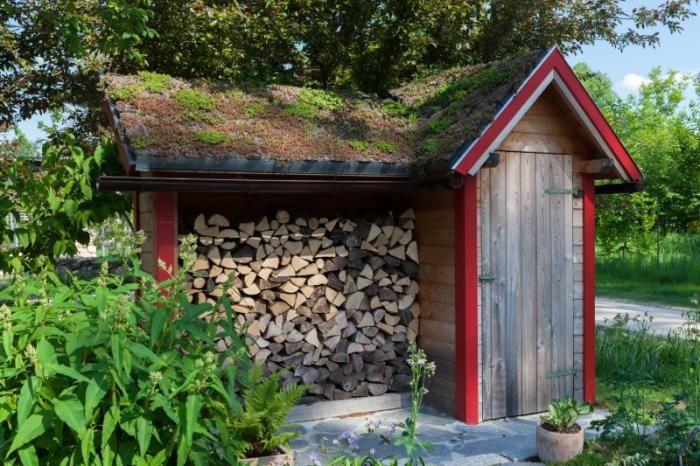cabanon de jardin, range-bûches et toiture verte de cabane de jardin