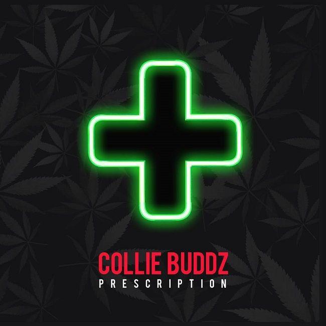 collie buddz gratuit