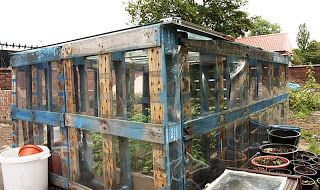 strawberries+pallets+grow | These are wooden pallets that are covered in plastic and then built to ...