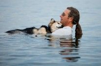 John & Shep On Lake Superior: This is Shep — he's 19 years old and sound asleep as he's being cradled in his father John's arms as they go for their daily swim in Lake Superior. Shep was rescued by John as an 8 month old pup and now, as a senior dog, he falls asleep every night when he's carried into the lake this way. The buoyancy of the water soothes his arthritic bones and Lake Superior is very warm right now, so the temp of the water is perfect for them. Love & devotion.