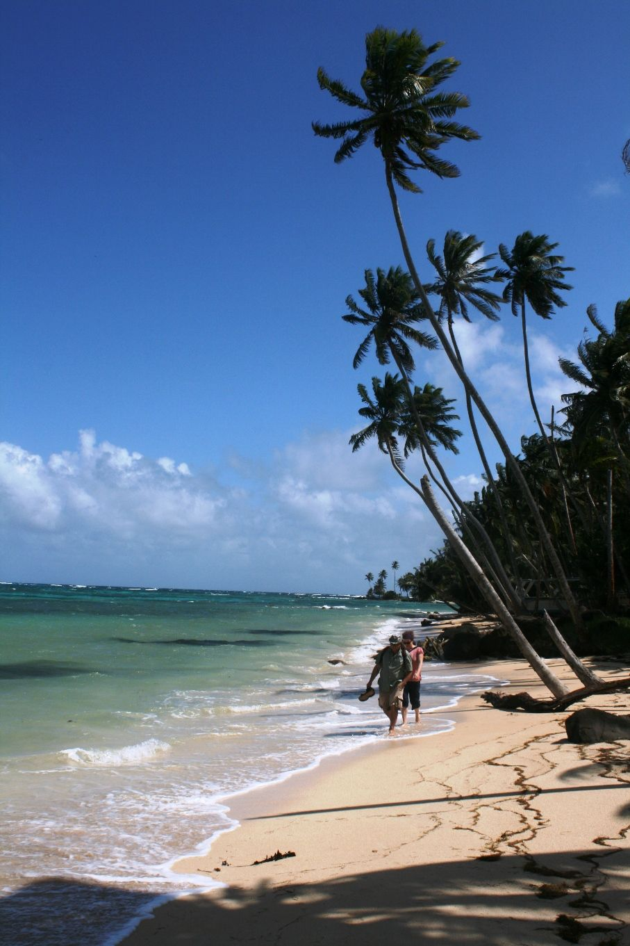 The most beautiful beaches of the south pacific with the ... |Most Beautiful Beaches South Pacific