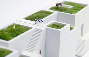 家の中に小さな庭を インテリアにグリーンを取り入れよ