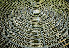 Самый большой лабиринт в мире находится в Турене (Франция). Его площадь — больше 4 гектар, а образуют его сельскохозяйственные растения — кукуруза и подсолнечник