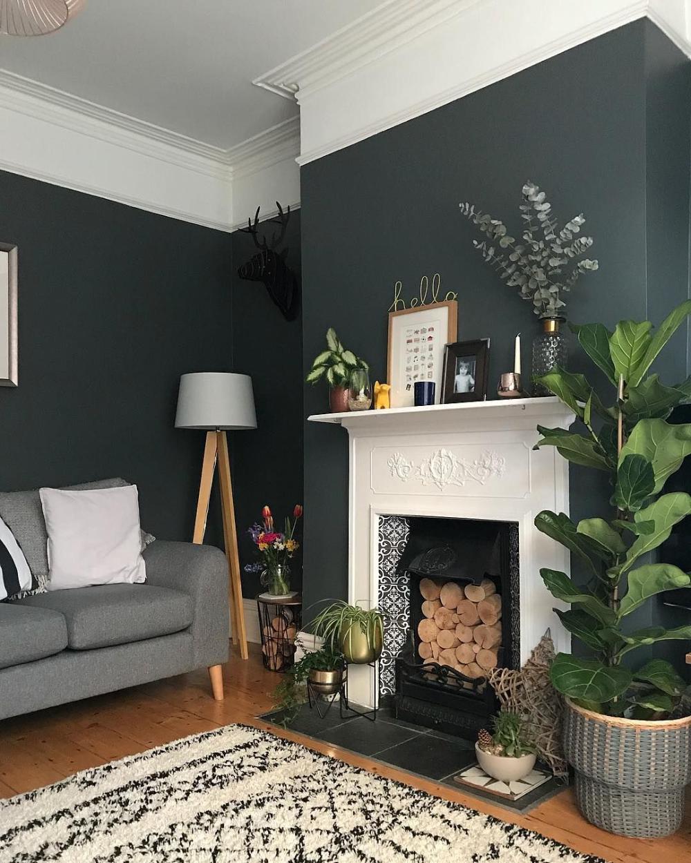 salon couleur sombre moulure plafond en 20  Inspiration salon