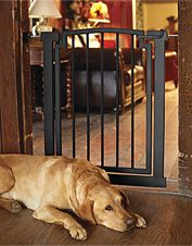 Indoor Dog Gates Metal Wooden Dog Gates Dog Gate Dog Door Wrought Iron Doors