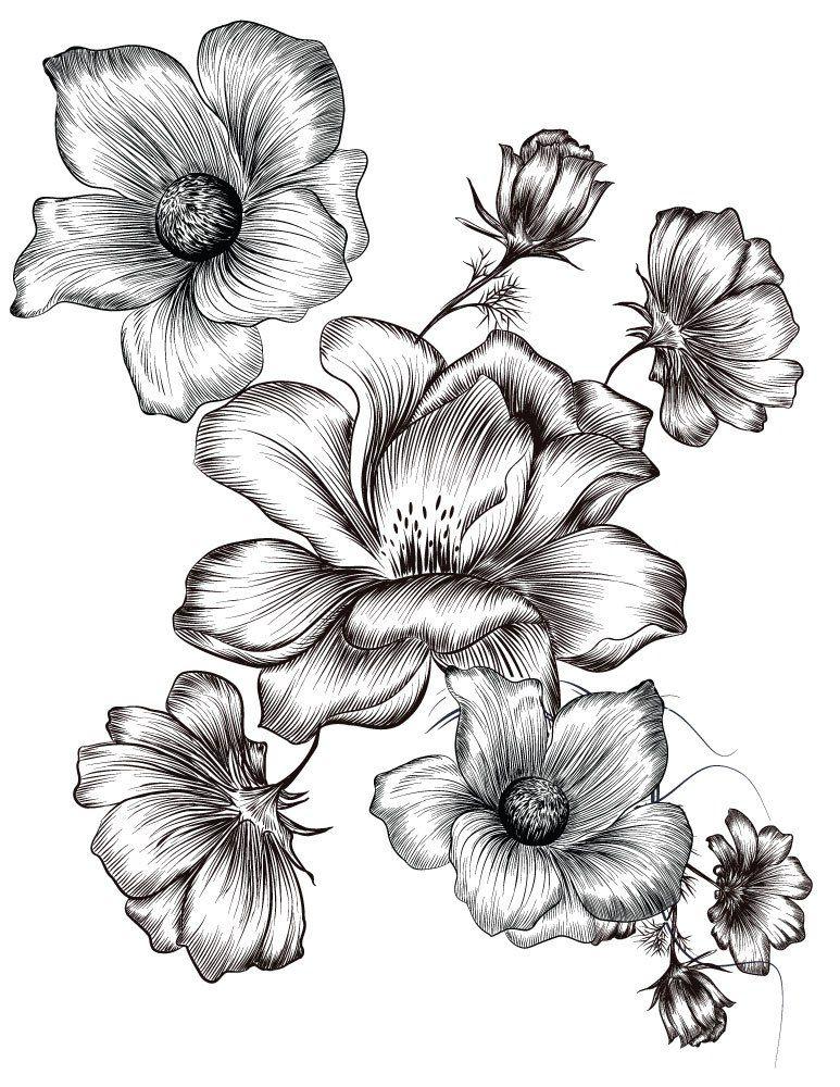 Petites Fleurs Coloriages Ete A Imprimer Image Gratuite Coloring
