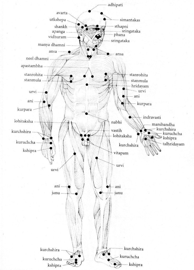 33++ Varma points in human body ideas in 2021