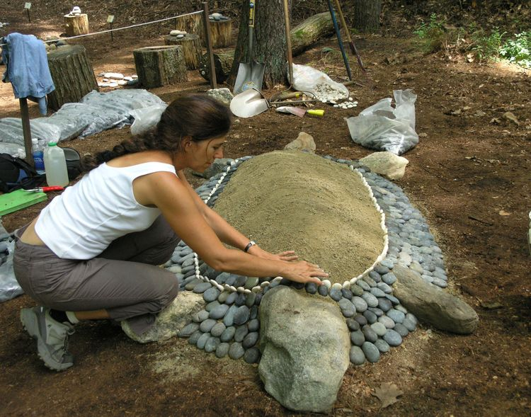 Some People See A Turtle Garden Projects Garden In The Woods