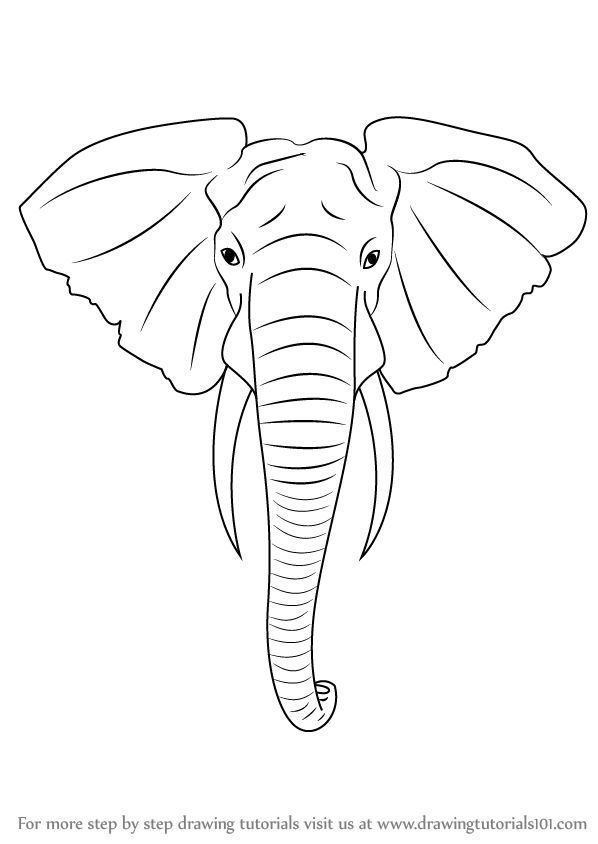 I 229 Elephant Head Intarsia Woodworking Pattern Jgr Woodworking Plans Patterns Intarsia Wood Wood Carving Patterns