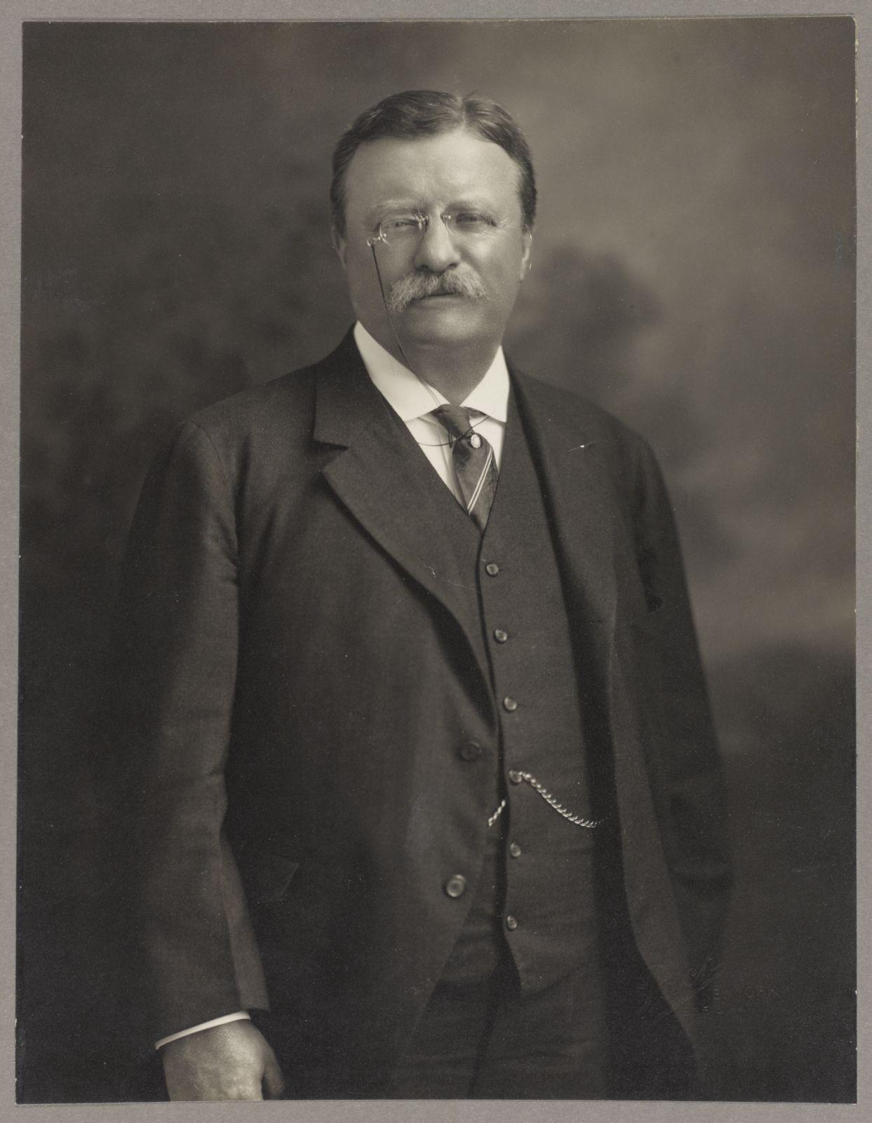 TR Center Theodore Roosevelt, halflength portrait