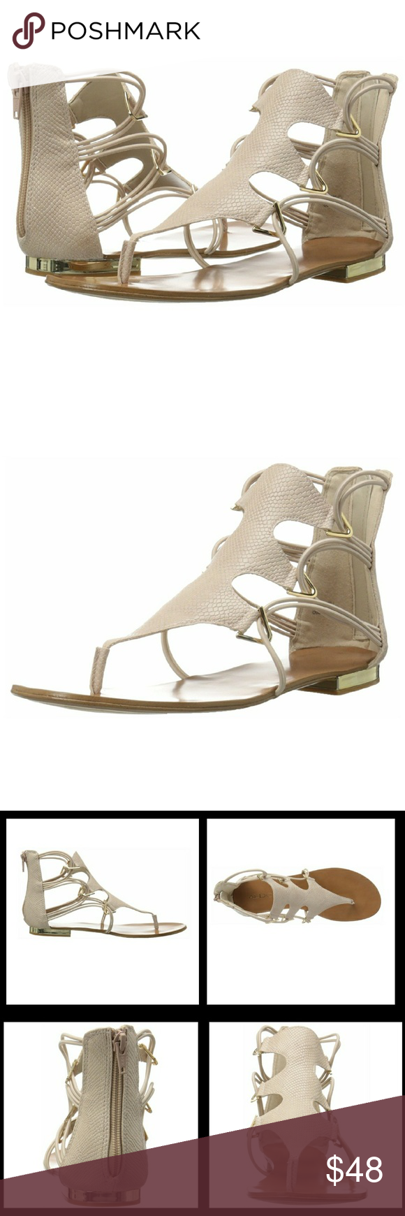 98e88ec3ab50  NEW  Aldo Barbiana Gladiator Sandals New in Box Aldo Women s Barbiana Gladiator  Sandals Size  8 Color  Bone -heel measures approx 0.5