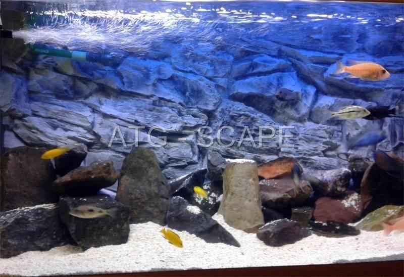 Aquarium 3d background online