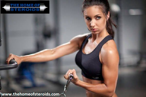 Steroids are chemical supplements that improve the production of