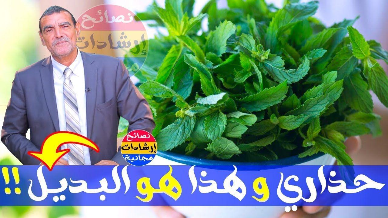 هل سمعت يوميا عن أضرار النعناع تعرفوا عليها و البدائل الصحية مع الدكتور محمد الفايد Health Herbs