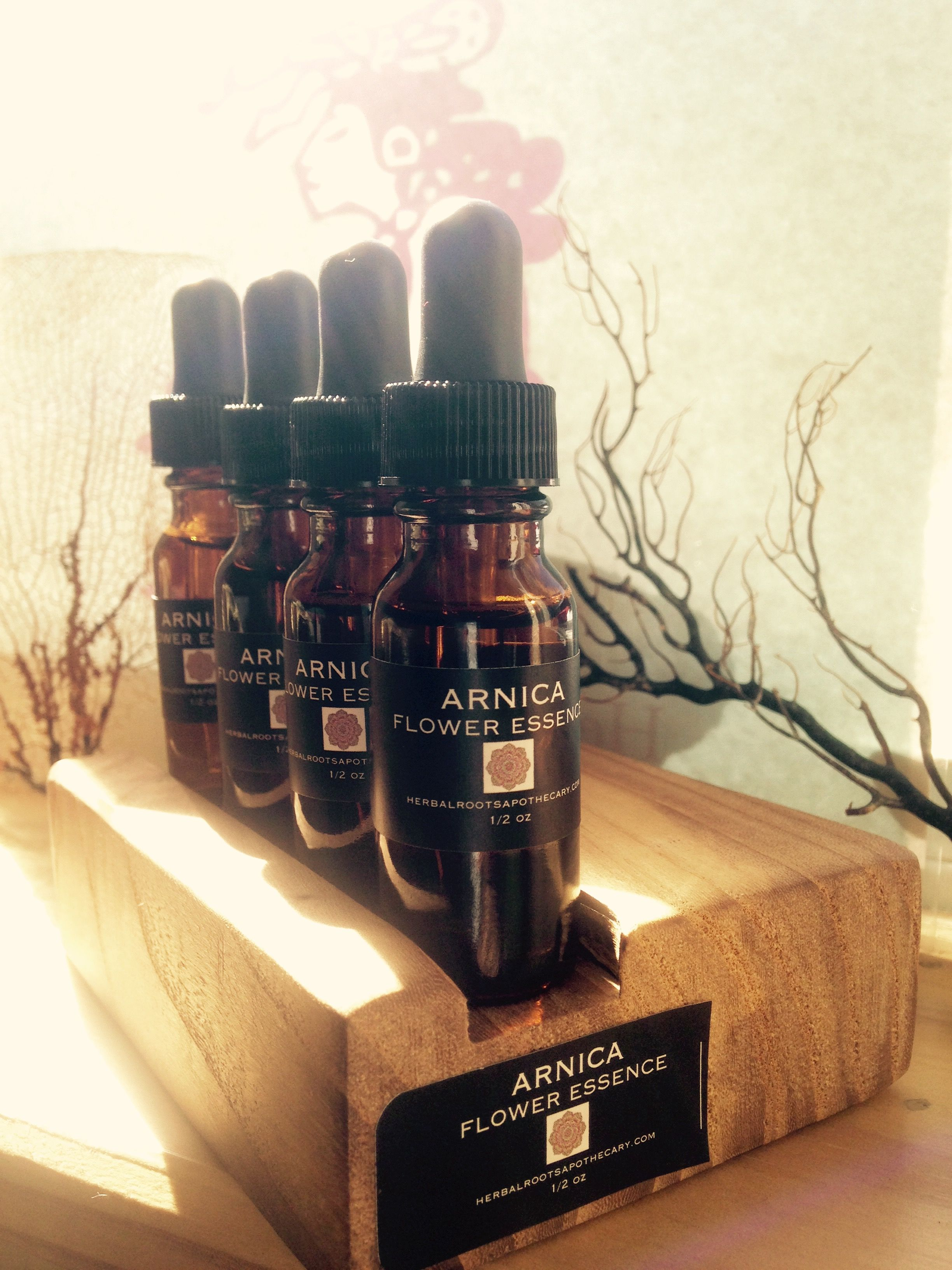 Arnica Flower Essence Updated With New Labels Herbal First Aid