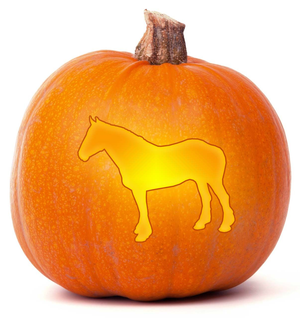 Download our free Horse Pumpkin Carving template. Browse through ...