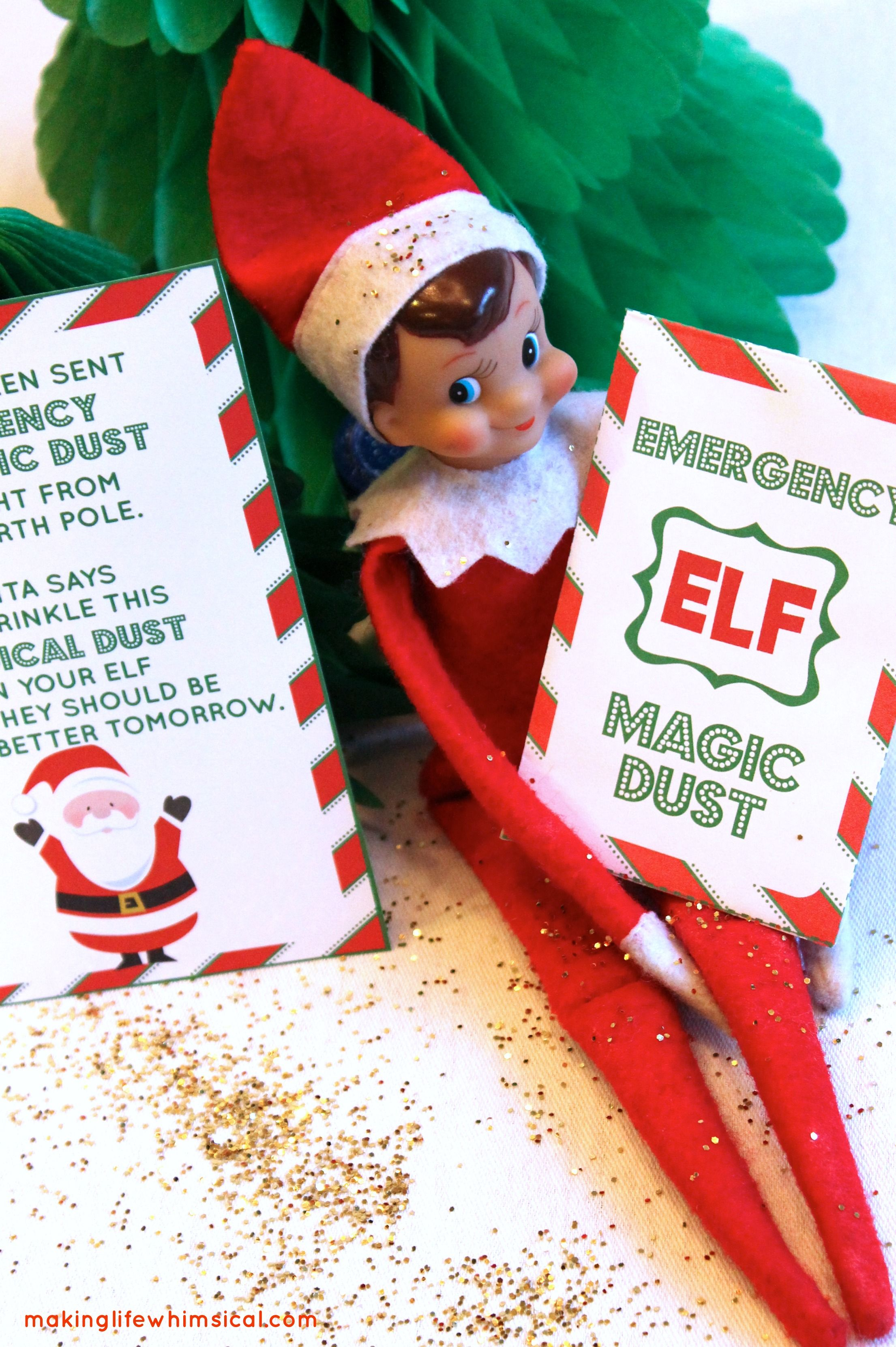 Just In Case Emergency Elf Recovery Printable Instant