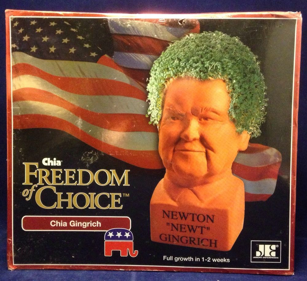 Chia Newt Gingrich Freedom of Choice Republican