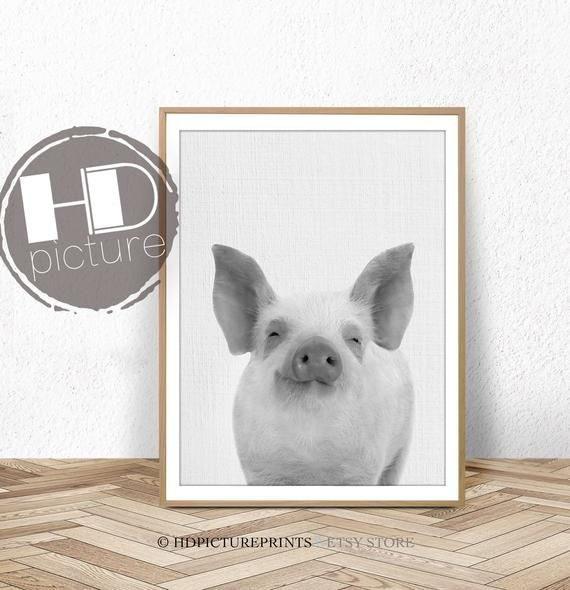 Farm Animal Printable Wall Art Baby