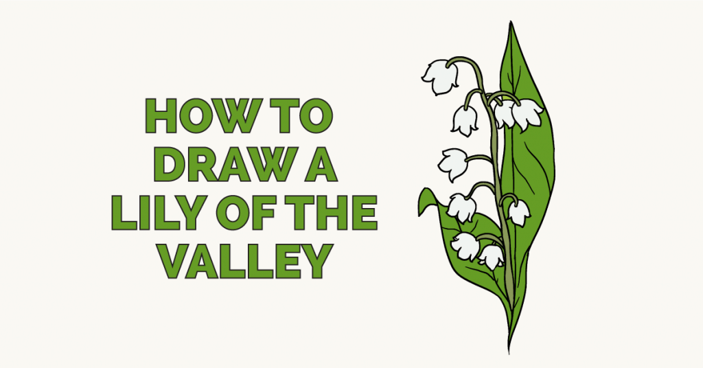 How to Draw a Lily of the Valley Flower drawing