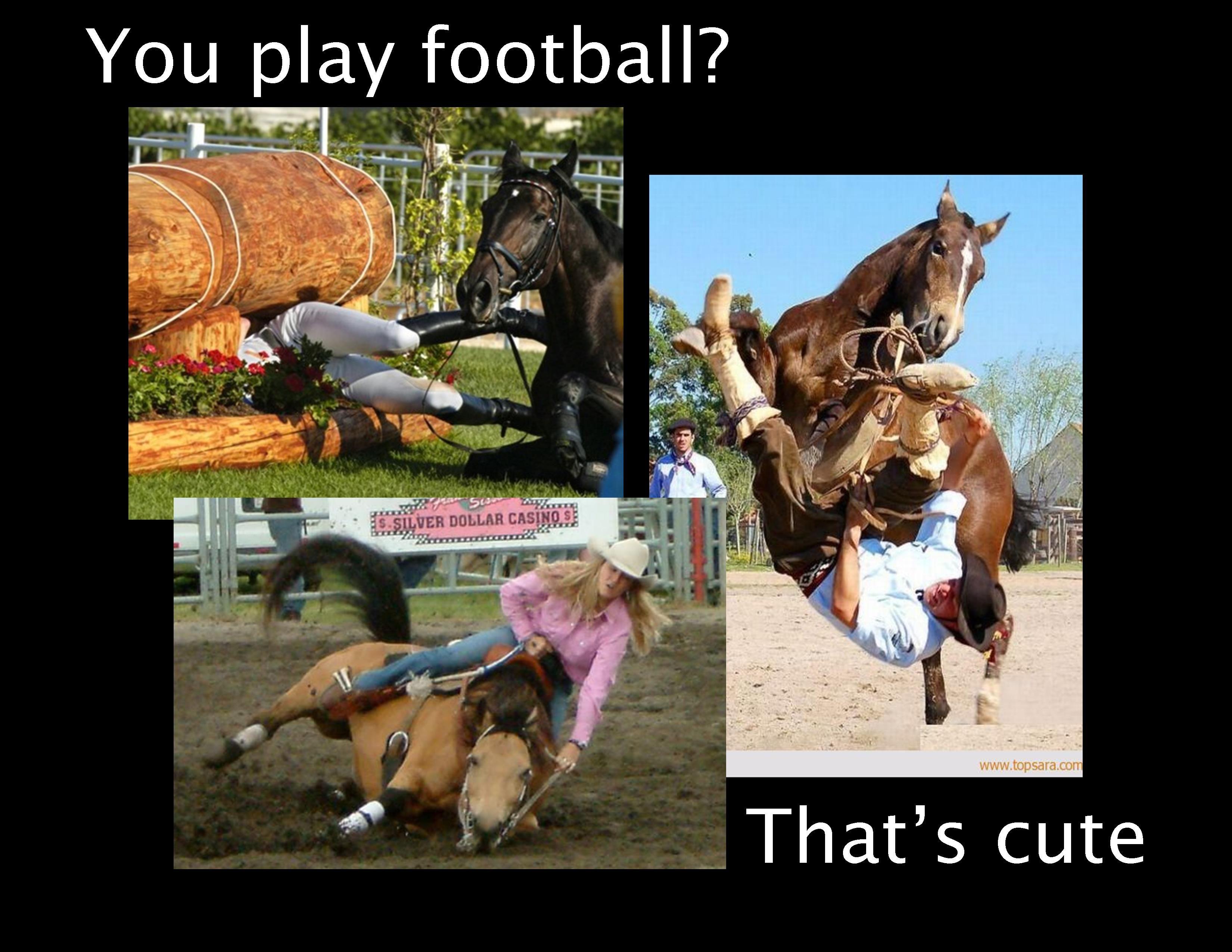 Pics photos quote i wrote for my horse com account s equestrian - Explore Horse Quotes Horseback Riding And More