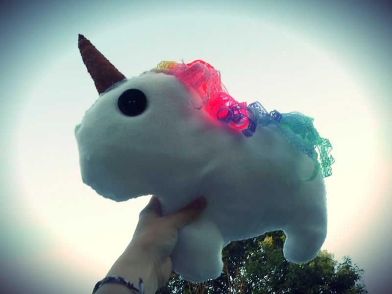 DIY Unicorn ♥