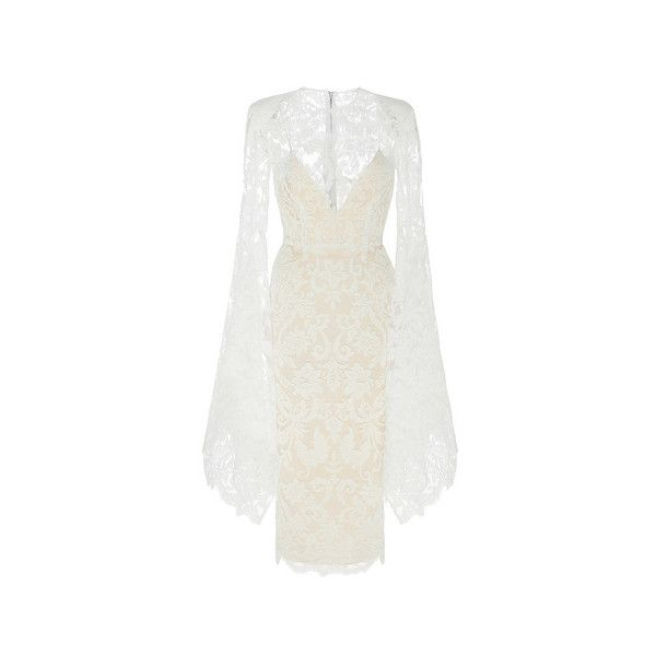 Alex Perry The Alaroy Lace Long Sleeve Lady Dress with Slip ($1,955 ...