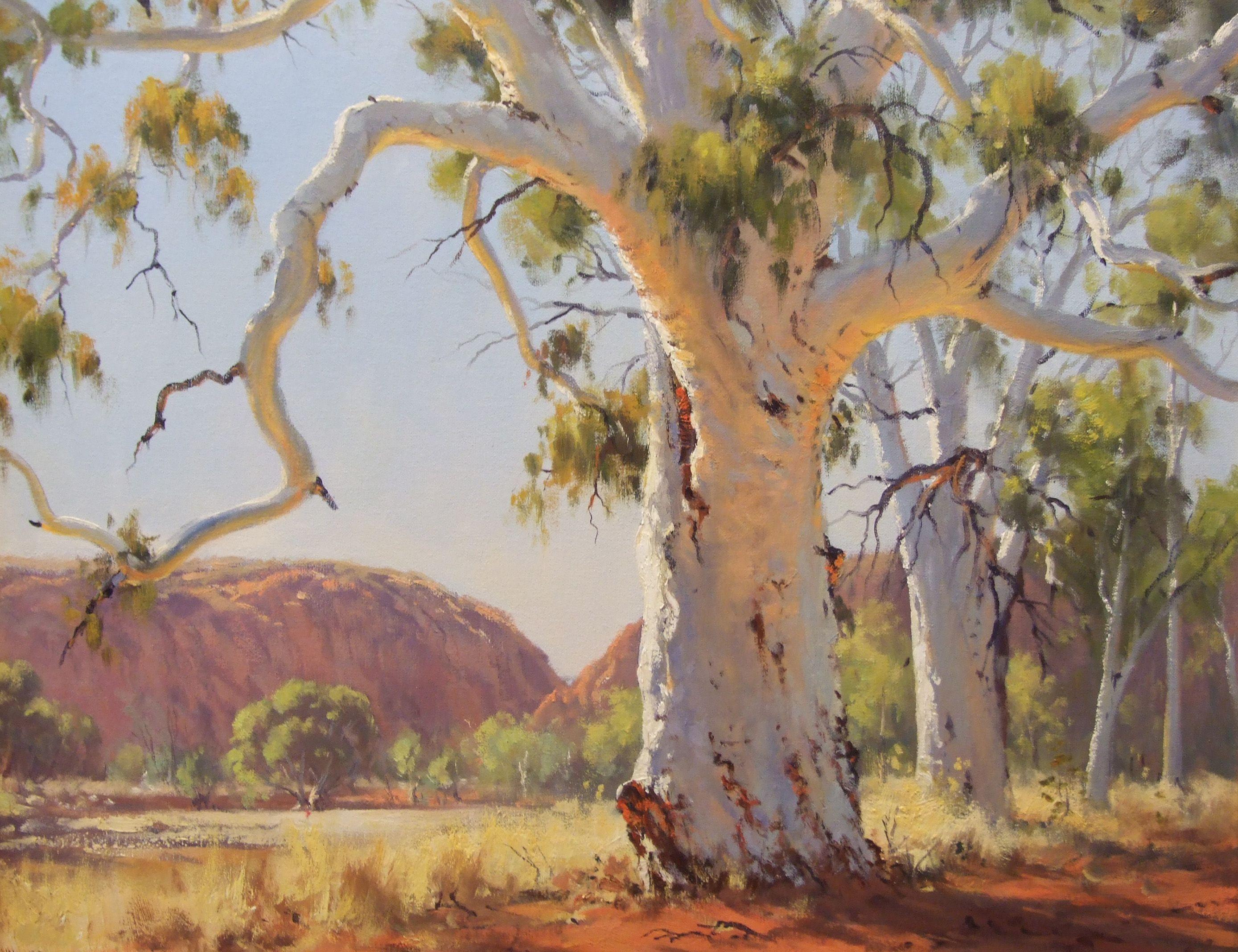 Ghost Gum Ted Lewis Landscape Paintings Landscape Art