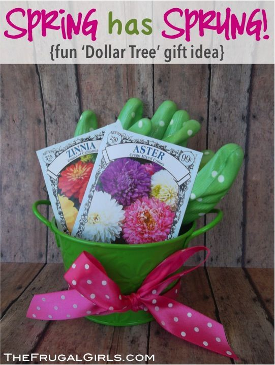Gardening Gifts Ideas Sweet little gardening gift ideas for your favorite gardener from sweet little gardening gift ideas for your favorite gardener from thefrugalgirls workwithnaturefo