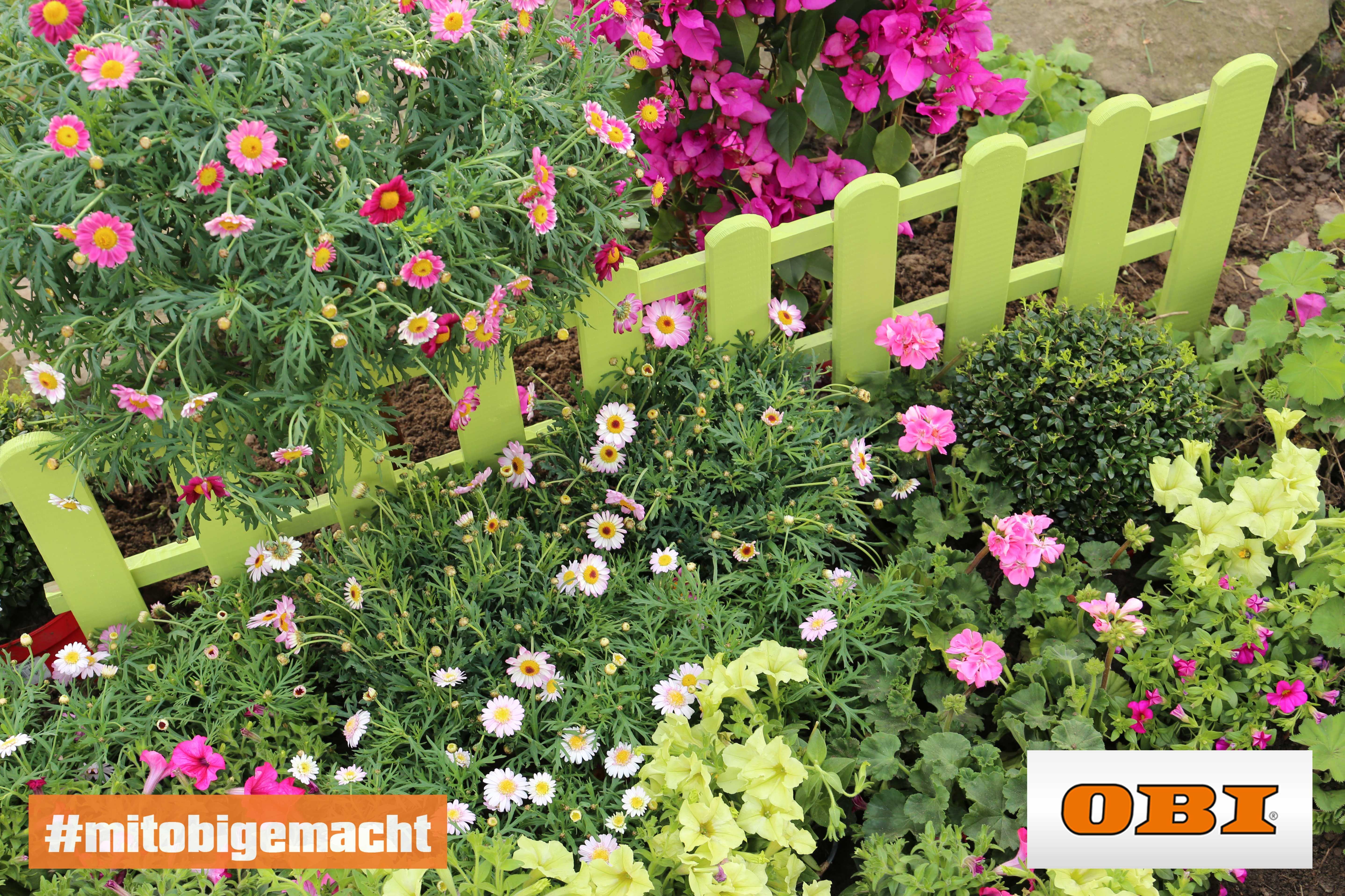 Blumenbeet Gestalten Tipps Zur Farbkomposition Obi Blumenbeet Gestalten Blumenbeet Garten Planen