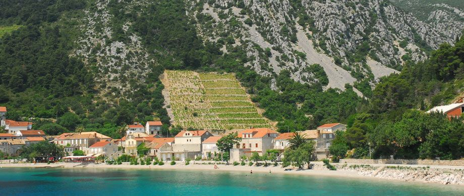 A Range Of Holiday Apartments To Rent In Peljesac Croatia Find Holiday Accommodation In Orebic Viganj Holiday Apartments Holiday Accommodation Holiday Home