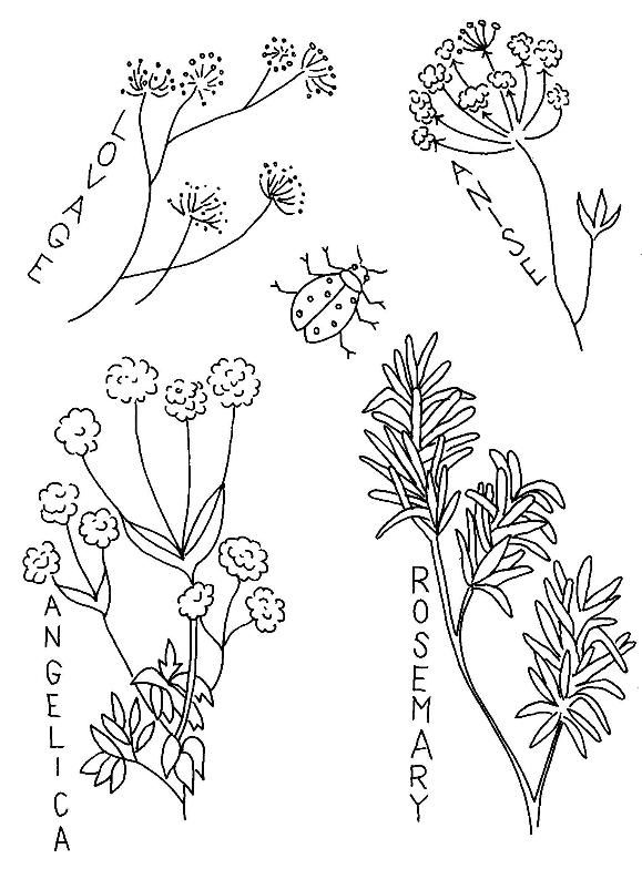 Free Vintage Herbs Freecrewel Crewel Embroidery Pinterest