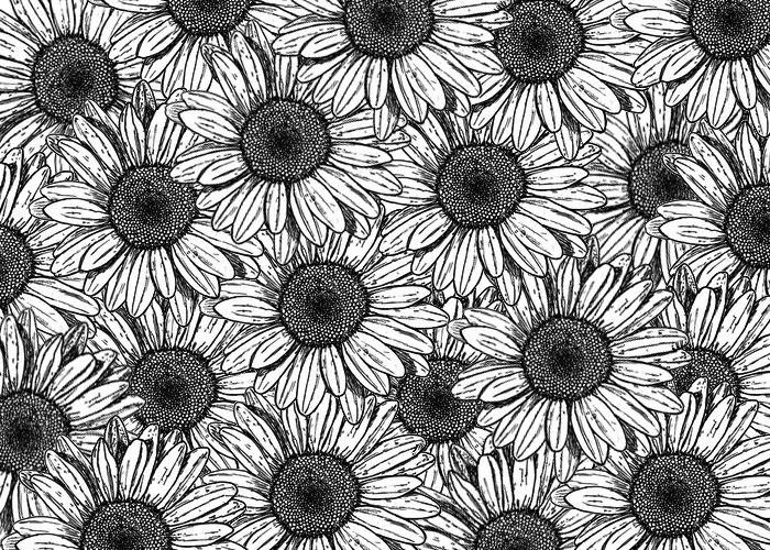 Best 25  Sunflower drawing ideas on Pinterest | Sunflower tattoos ...