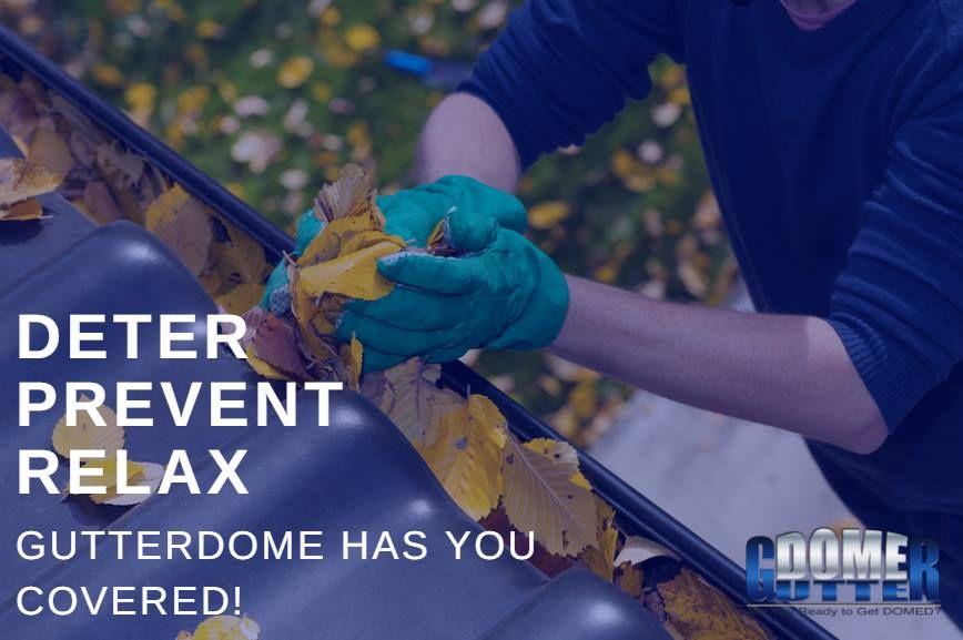 Blog GutterDome, Inc. Cleaning gutters, Gutter