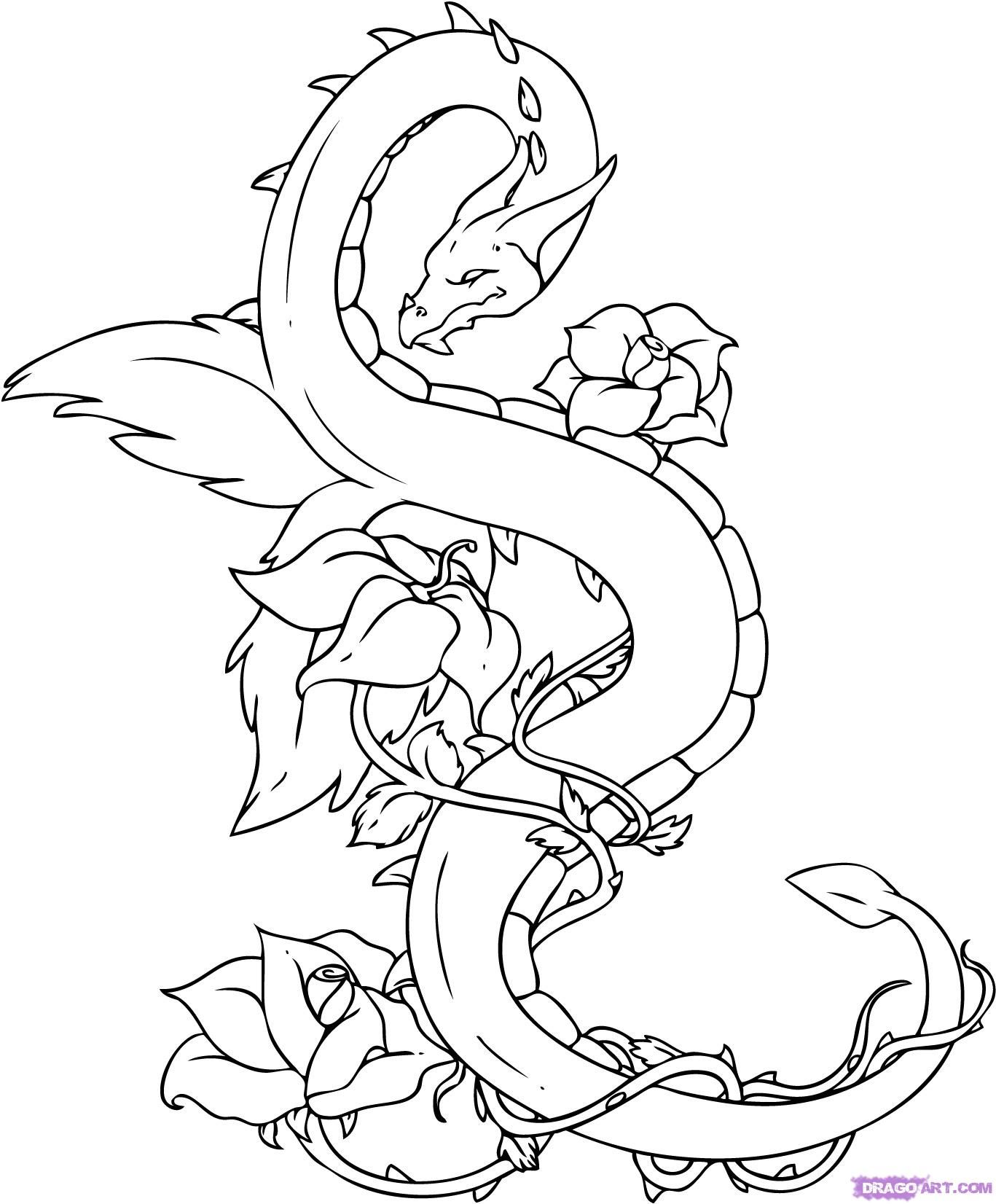 How to draw a dragon Dragon tattoo drawing, Dragon drawing